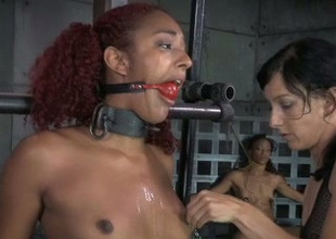 Curly haired ebony redhead can't disobey her mistress