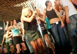 Dick worshiping blond bimbos sucking knobs at a sex party