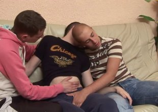 Cute jeans-clad gay teen with short quill and a fantastic body enjoying threeway fun