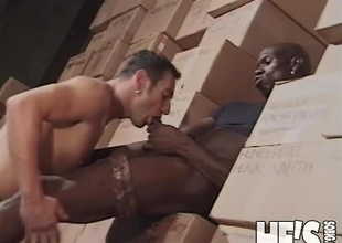 What do u do when u work the night shift in a Cooperative store stacking boxes with a bunch of sexy guys? You find the one with the biggest jock and u take him somewhere secluded...and then u suck on his overweight dick! That's exactly what happens in this scene,